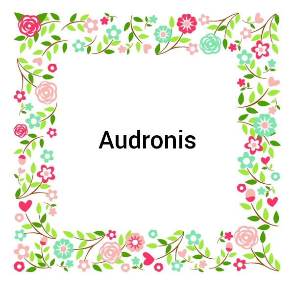 Audronis